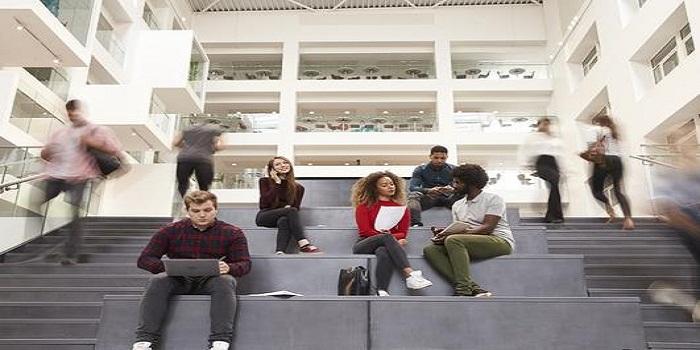 Quelles études supérieures faire ?